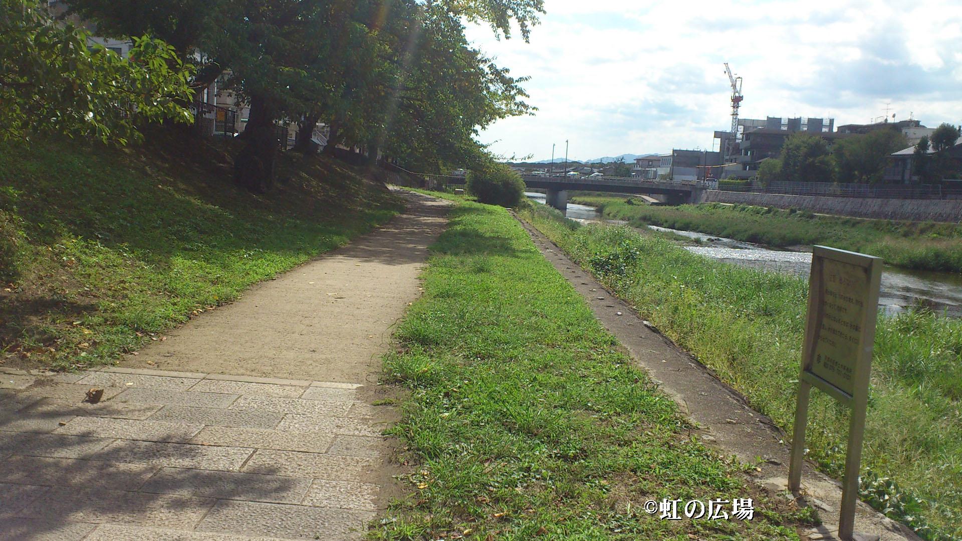 高野川河川敷2